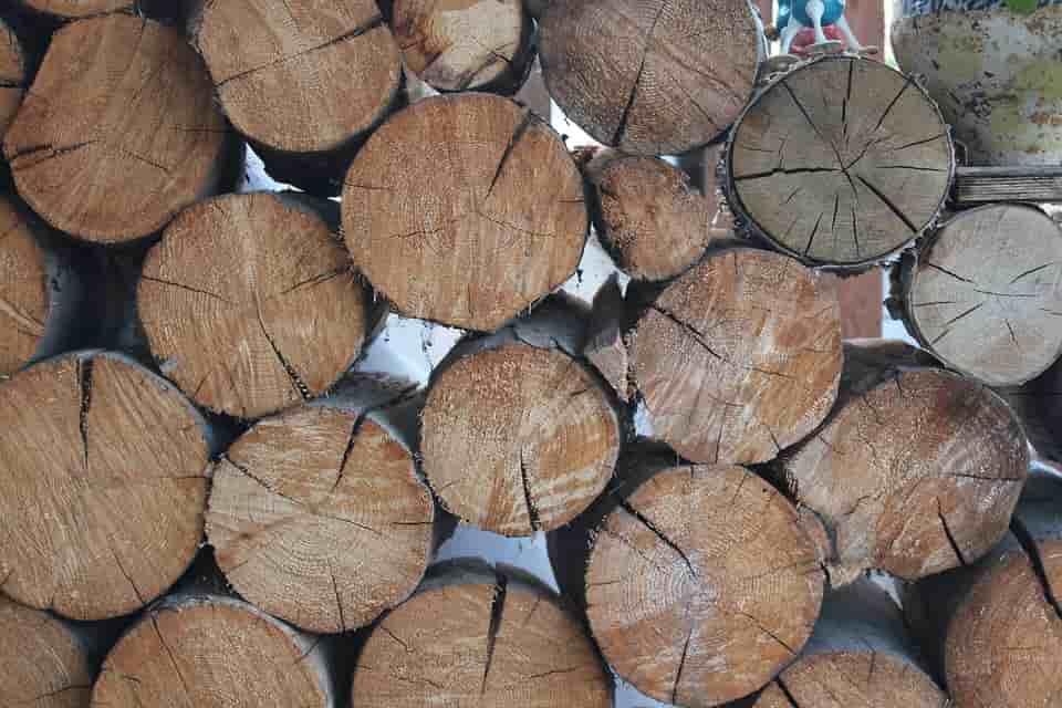 fafeldolgozás